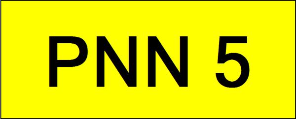 PNN5 VVIP Plate Johor Bahru (JB), Kuala Lumpur, KL, Malaysia. Service | AAA Premium Sdn Bhd