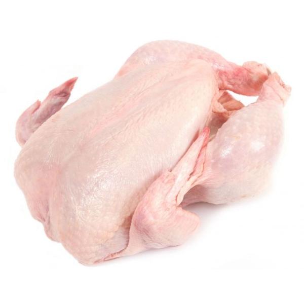 Spring Whole Chicken Frozen Poultry / Chicken Selangor, Malaysia, Kuala Lumpur (KL), Batu Caves Supplier, Suppliers, Supply, Supplies | G DAILY SUPPLY SDN BHD