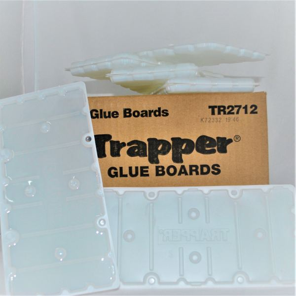 TRAPPER GLUE BOARDS Rodent Control Kuala Lumpur (KL), Selangor, Malaysia Supplier, Suppliers, Supply, Supplies | XWay Sdn Bhd