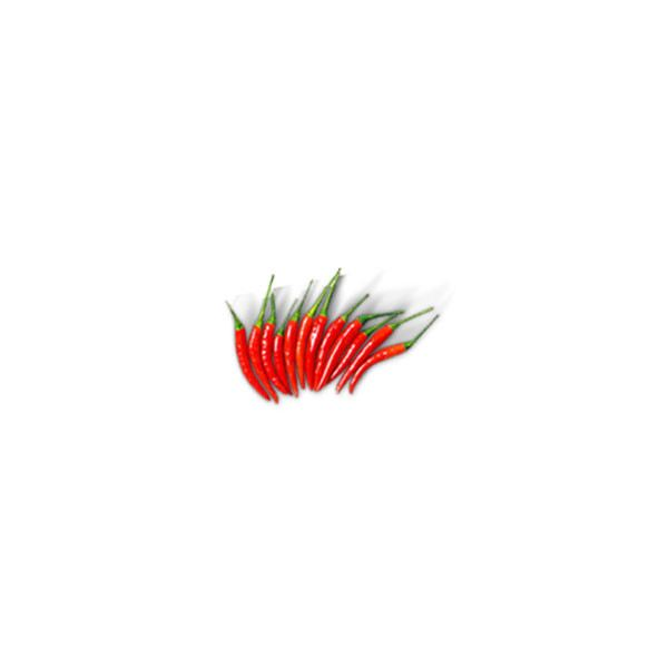 Red Small Chili Pepper Vegetables Selangor, Malaysia, Kuala Lumpur (KL), Batu Caves Supplier, Suppliers, Supply, Supplies   G DAILY SUPPLY SDN BHD