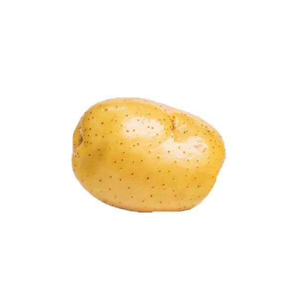 U.S Potato Root Tuber Vegetables Selangor, Malaysia, Kuala Lumpur (KL), Batu Caves Supplier, Suppliers, Supply, Supplies | G DAILY SUPPLY SDN BHD