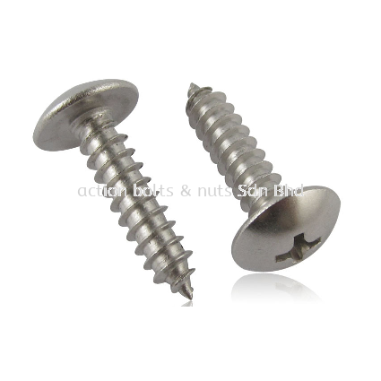 A2 TH Self Tapping Screw +AB A2 Truss Head Self Tapping Screw Self Tapping Screws Malaysia, Selangor, Kuala Lumpur (KL) Manufacturer, Supplier, Supply, Supplies | Action Bolts And Nuts Sdn Bhd