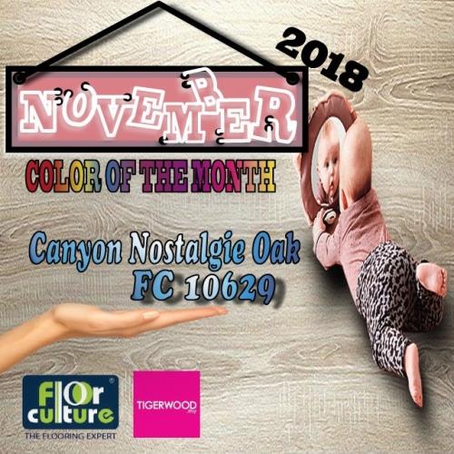 [November 2018] Color Of The Month- FC 10629 Canyon Nostalgie Oak