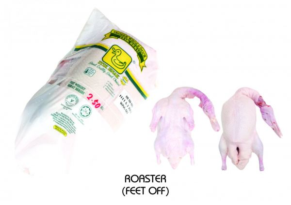 FROZEN WHOLE DUCK (ROASTER) Frozen Whole Duck Penang, Pulau Pinang, Malaysia Supplier, Suppliers, Supply, Supplies   PG Lean Hwa Trading Sdn Bhd