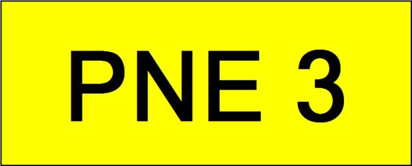 Number Plate PNE3 VVIP Plate Johor Bahru (JB), Kuala Lumpur, KL, Malaysia. Service | AAA Premium Sdn Bhd