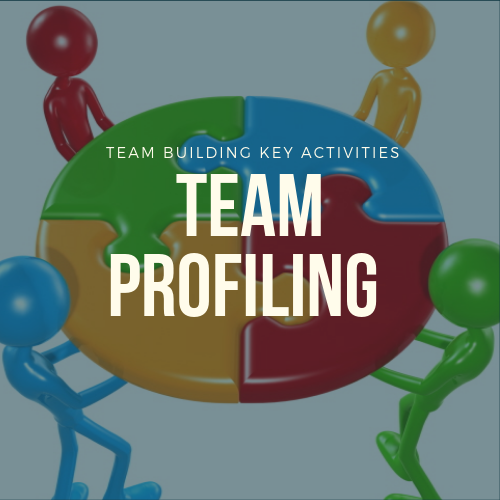 Team Profiling Team Building Activities In Malaysia 2019 Team Building Selangor, Malaysia, Kuala Lumpur (KL), Shah Alam Training, Workshop | Iconic Training Solutions Sdn Bhd