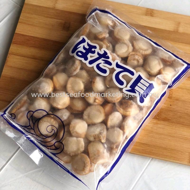 Hotate / 熟带子 (Size 100-150)(sold per pack)