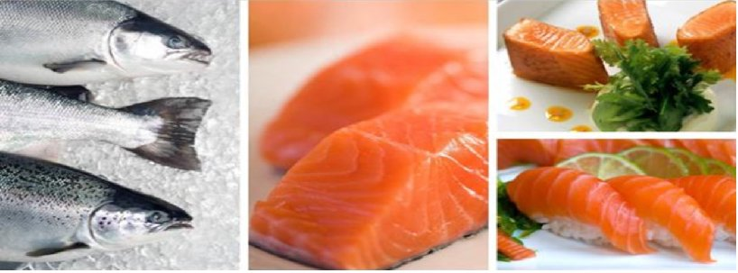 G DAILY SUPPLY SDN BHD - Seafood Supplier, Frozen Food in Selangor