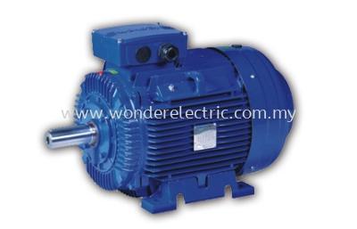 WE (IE2) High Efficiency Asynchronous Cast Iron Motors