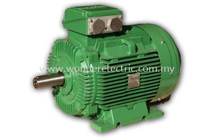 SWE (IE3) Premium Efficiency Cast Iron Motors IEC Series AC Motors Selangor, Malaysia, Kuala Lumpur (KL), Singapore, Puchong Supplier, Suppliers, Supply, Supplies | Wonder Electric Motor (M) Sdn Bhd