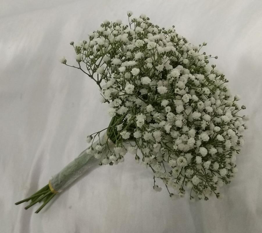 BabyBreath Bridal Bouquet (BB-189)