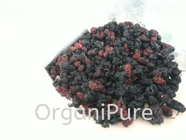 DRIED MULBERRY DRIED FRUITS AND NUTS NON-ORGANIC FOOD PRODUCTS Selangor, Malaysia, Kuala Lumpur (KL), Shah Alam Supplier, Suppliers, Supply, Supplies   Organipure Sdn Bhd