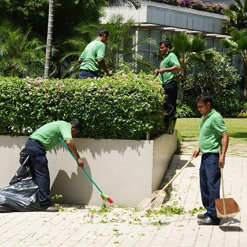 Plant Trimming Service Landscape Maintenance Service Kuala Lumpur (KL), Malaysia, Selangor Service | Master Landscape Sdn Bhd