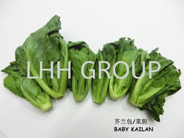 Baby Kailan Vegetable Thailand Malaysia, Johor Bahru (JB), Singapore, Kulai Exporter, Supplier, Distributor, Importer | Lian Hoe Huat Enterprise (M) Sdn Bhd