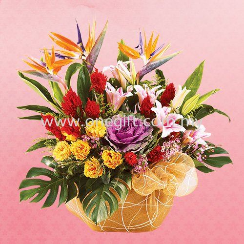 E65 Chinese New Year Hamper Malaysia, Selangor, Kuala Lumpur (KL), Shah Alam Supplier, Suppliers, Supply, Supplies   The One Gift Gallery Sdn Bhd