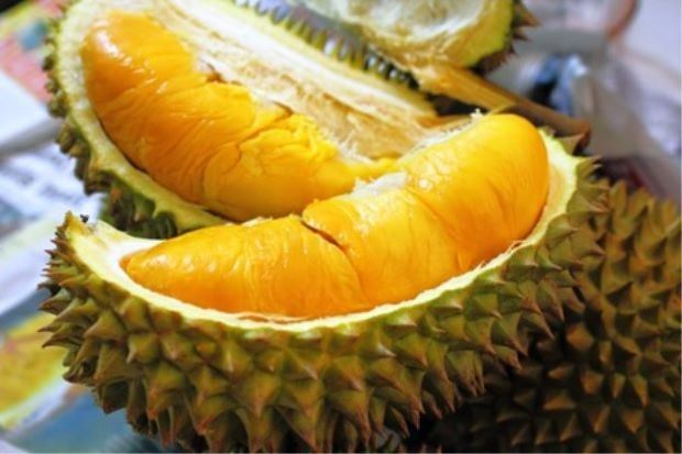 Musang King / Mao Shan Wang