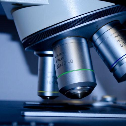 Microbiology Test Microbiology Analysis Malaysia, Selangor, Kuala Lumpur (KL), Johor Bahru (JB), Penang Service | Spectrum Laboratories Group