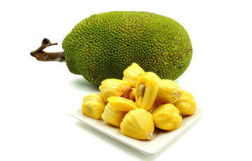 Jackfruit Puree Mix with Fruit Chunks Tropical Fruit Series Fruit Puree Mixes with Fruit Chunks Malaysia, Melaka Manufacturer, Supplier, Supply, Supplies | Madam Sun Sdn Bhd