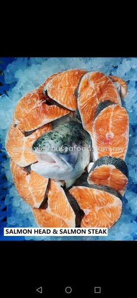 Salmon Head & Salmon Steak Frozen Fish Selangor, Malaysia, Kuala Lumpur (KL), Klang Supplier, Suppliers, Supply, Supplies | Wei Chu Seafood Supply Trading Sdn Bhd