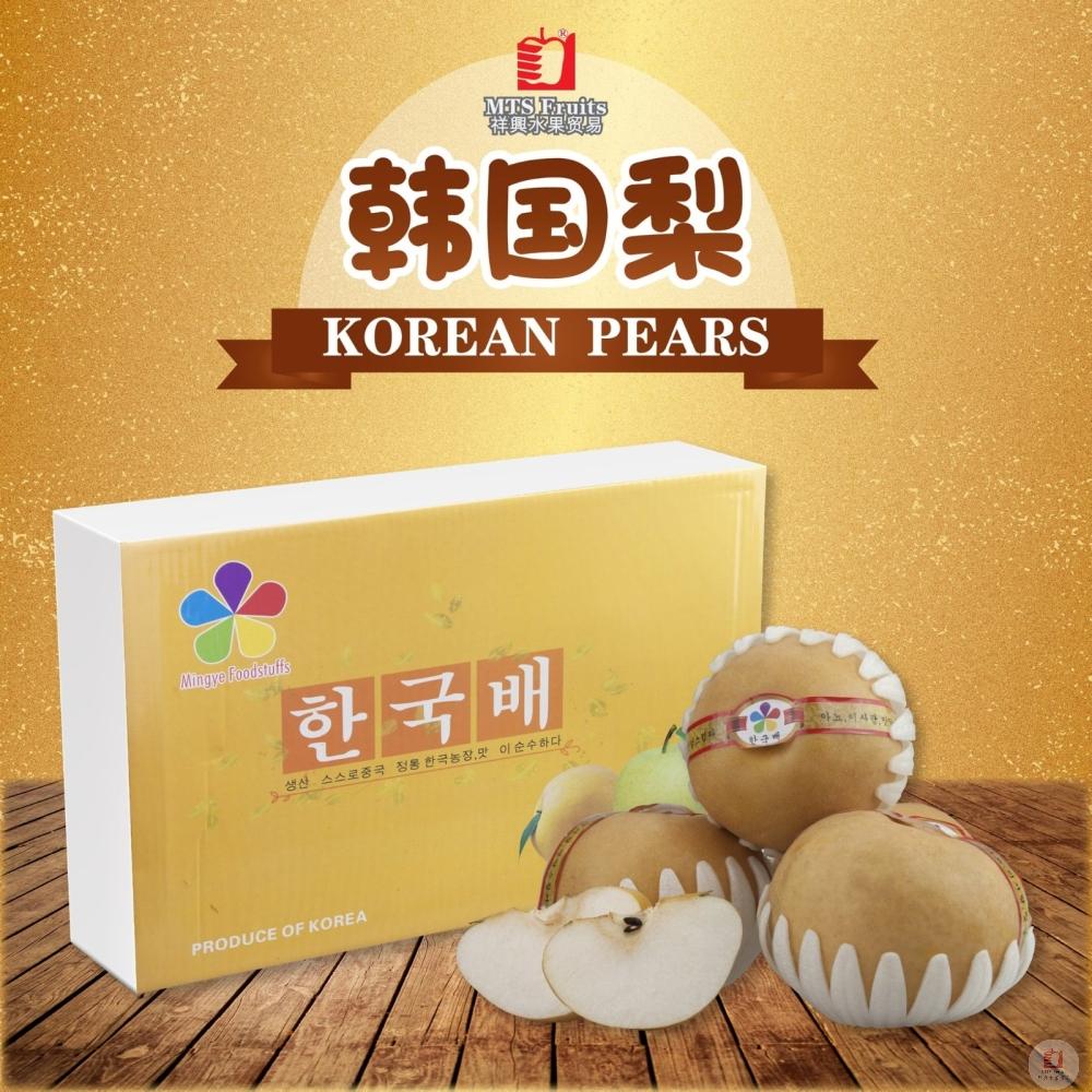 韩国梨 Korean Pears