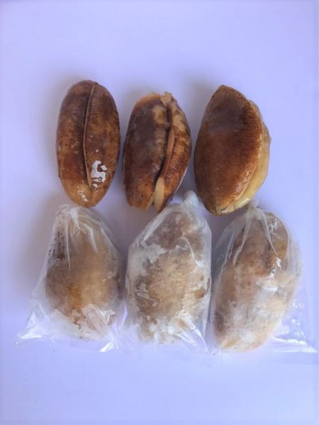 Sea cucumber Others Frozen Seafood Selangor, Malaysia, Kuala Lumpur (KL), Puchong Supplier, Suppliers, Supply, Supplies | SGT Frozen Foods Sdn Bhd
