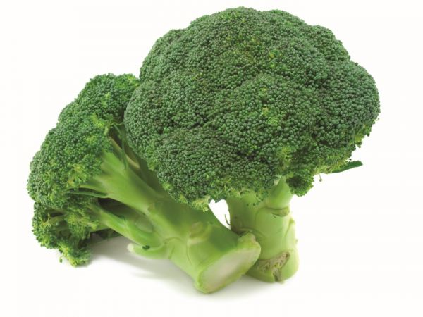 Brocolli Vegetables Sarawak, Malaysia, Kuching Supplier, Suppliers, Supply, Supplies   Foodmen Sdn Bhd