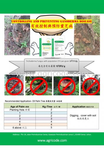TRICHO 5524 : CONTROL AND PREVENTING GANODERMA DISEASE