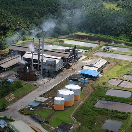 Palm Plantation and Oil Refinery Indonesia Malaysia, Selangor, Kuala Lumpur (KL) Supplier, Suppliers, Supply, Supplies   Wideston Consortium