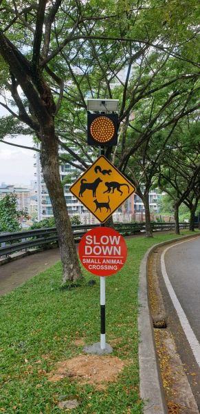caution road sign with solar amber light Road Sign Signages Selangor, Malaysia, Kuala Lumpur (KL), Batu Caves Manufacturer, Maker, Design, Supplier | CP Sign Construction
