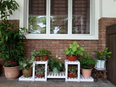 7SW PVC Flower Pot Rack  ���ϰ廨��
