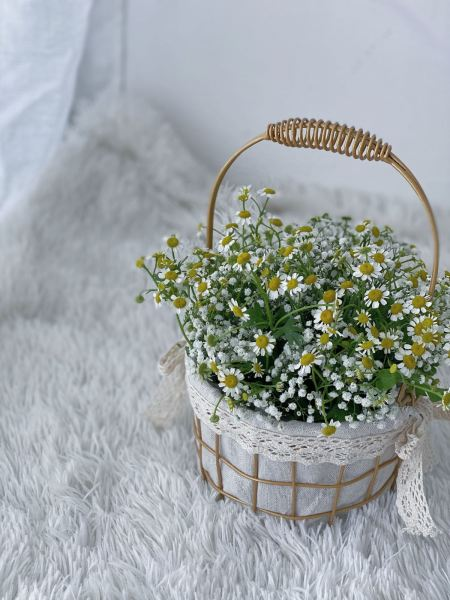 HER WISHES FLOWER BOX Melaka, Malaysia Supplier, Suppliers, Supply, Supplies   CCH FLORIST (M) SDN BHD