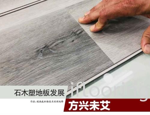 SPC Flooring Now and Future