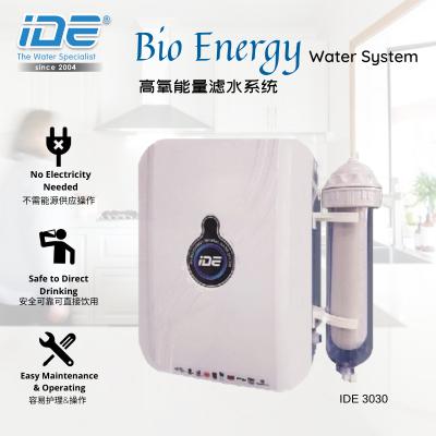 IDE 3030 Bioenergy Alkaline Water System