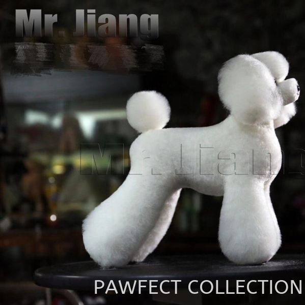 Mr. Jiang Teddy Model Dog Whole Body Wig (without mannequin) Model Dogs Selangor, Malaysia, Kuala Lumpur (KL), Petaling Jaya (PJ) Supplier, Suppliers, Supply, Supplies | Pawfect Collection International Sdn Bhd