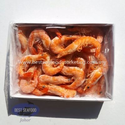 Cooked White Prawn / ����Ϻ / Udang Masak (Size 31-40)(sold per pack)