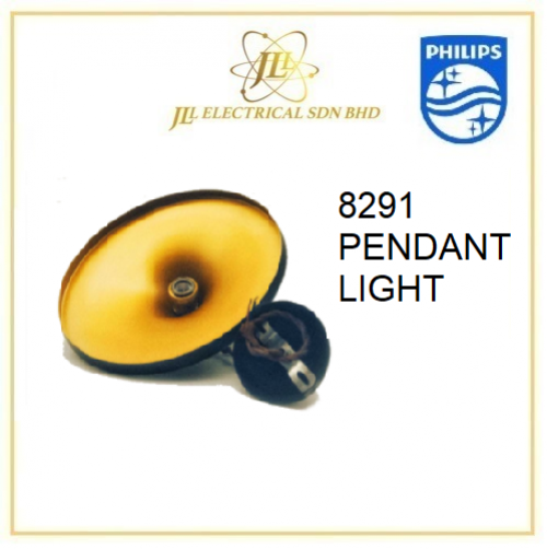 8291 PENDANT LIGHT