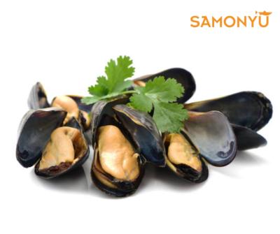 ȫ�Ǻ��Full Shell Black Mussel 900g-1kg