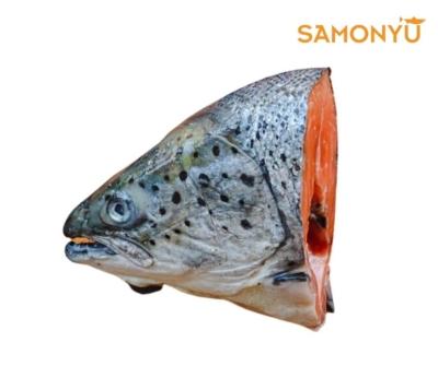 FH0012 Salmon Fish Head ~ WHILE STOCK LAST