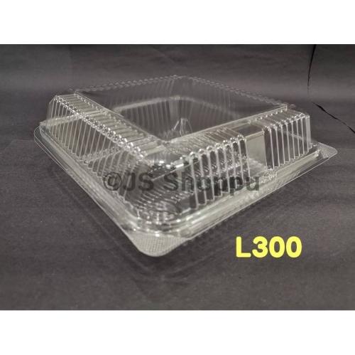 Kuih Container L300 (50pcs±)