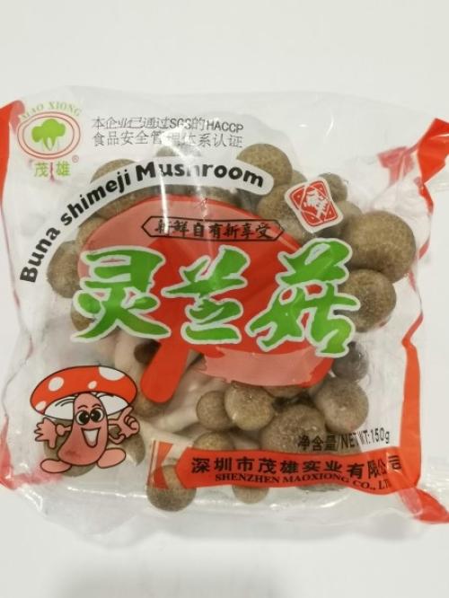 MX SHIMEJI MUSHROOM  灵芝菇 150g