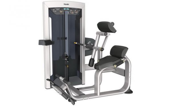 Back Extension FE9732    EXOFORM Strength Machine Commercial GYM Penang, Malaysia, Perak, Jelutong, Ipoh Supplier, Supply, Supplies, Setup | Arah Bumiraya Sdn Bhd/Olympic Sports & Fitness Sdn Bhd