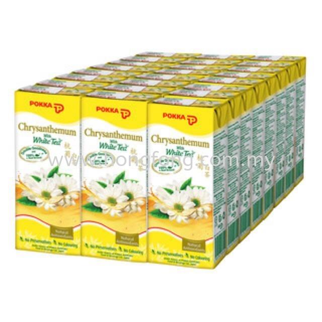 POKKA Chrysanthemum White Tea TP 250ML
