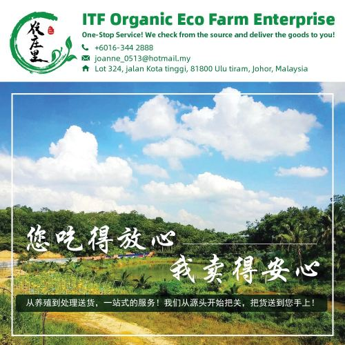 ITF Organic Eco Farm Enterprise