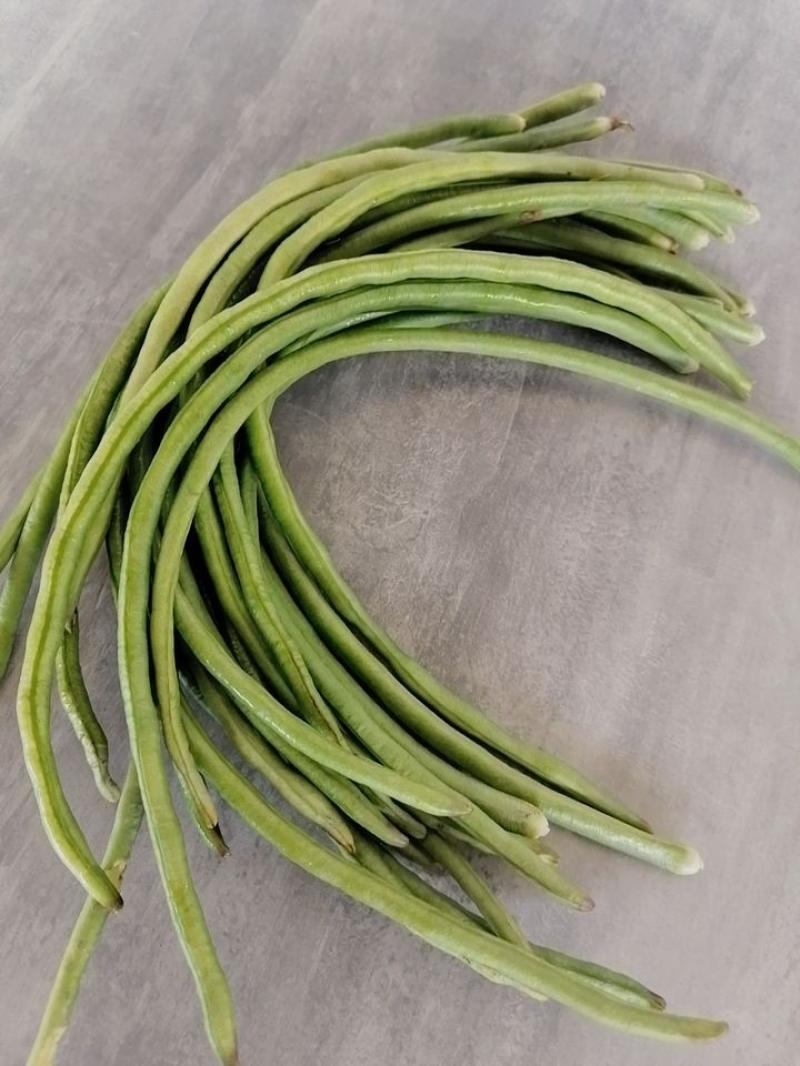Common bean (300g)