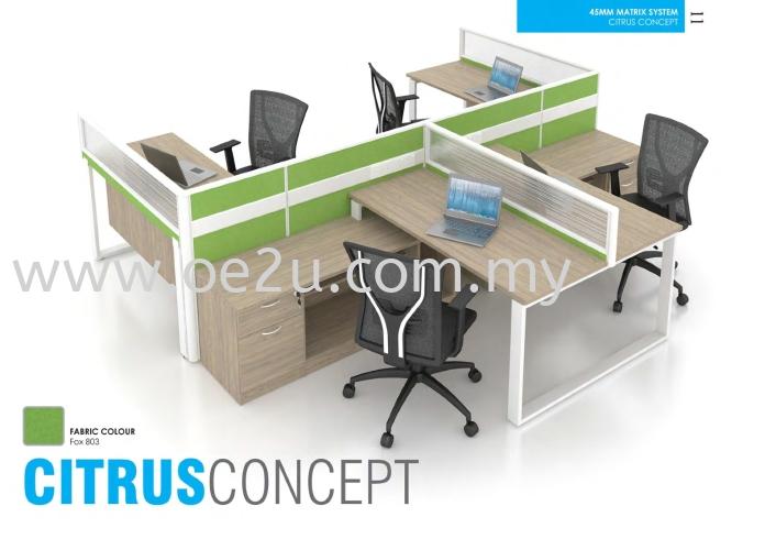 Office Workstation (CITRUS Concept)