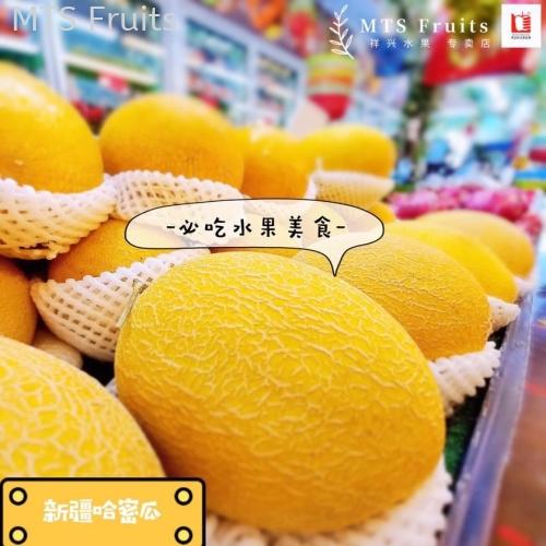 新疆哈密瓜 CN Melon