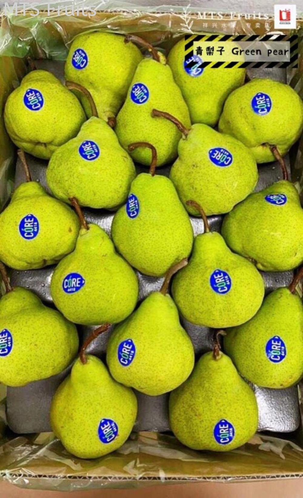 青梨子 Green pear