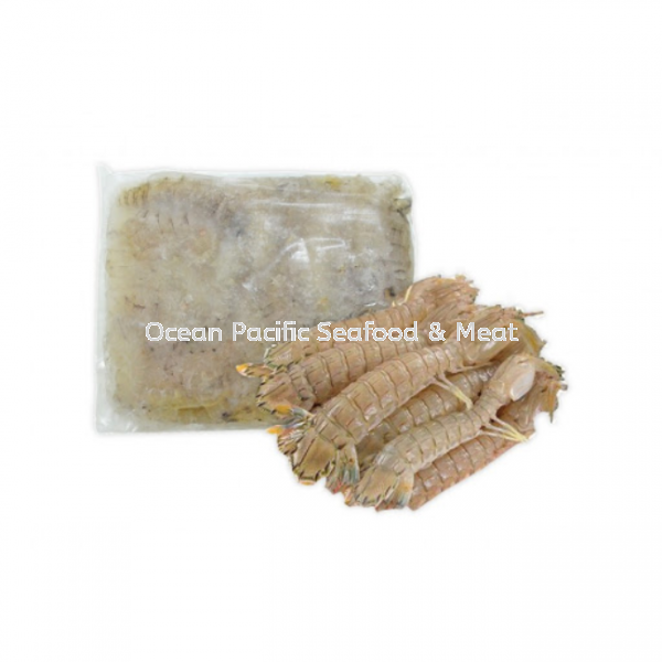 Frozen Fully Cooked Mantis Shrimp -12cm up (500g/pkt) Prawn Seafood Johor Bahru (JB), Malaysia Wholesaler, Supplier, Supply, Supplies   Ocean Pacific Seafood & Meat Sdn Bhd