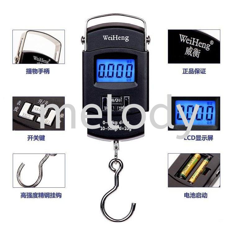 50Kg/10g Electronic Backlight Weighing Scale Portable Digital Fishing Postal Hanging Hook Scale