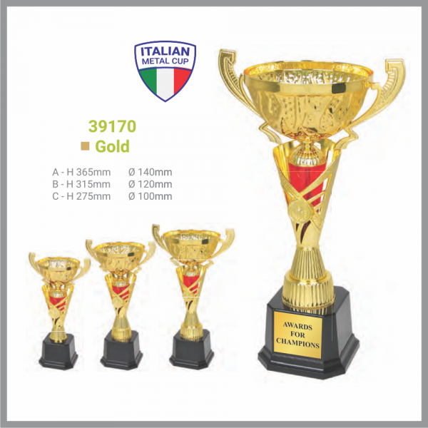 TROPHY 39170 Gold Metal Cup with Handle Assembled Trophy Kuala Lumpur (KL), Malaysia, Selangor, Kepong Supplier, Suppliers, Supply, Supplies | Pustaka Gemilang
